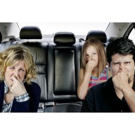 Geurverwijdering Ozon Behandeling, Driven2shine, ozon